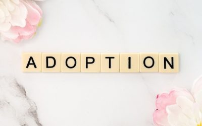 How Adoption Works at Abrazo